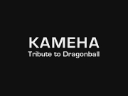 Kameha - Rep�res (Tribute to Dragonball)